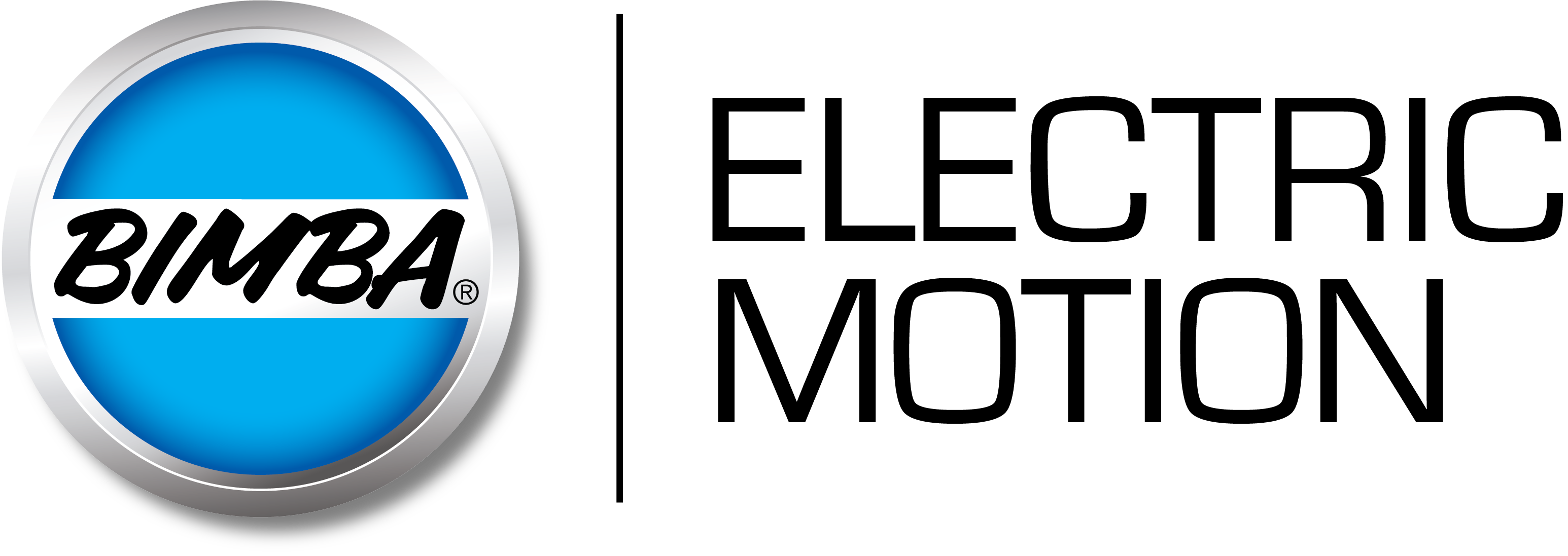New_Bimba_Dim_4c_logo_ELECTRIC_MOTION.png